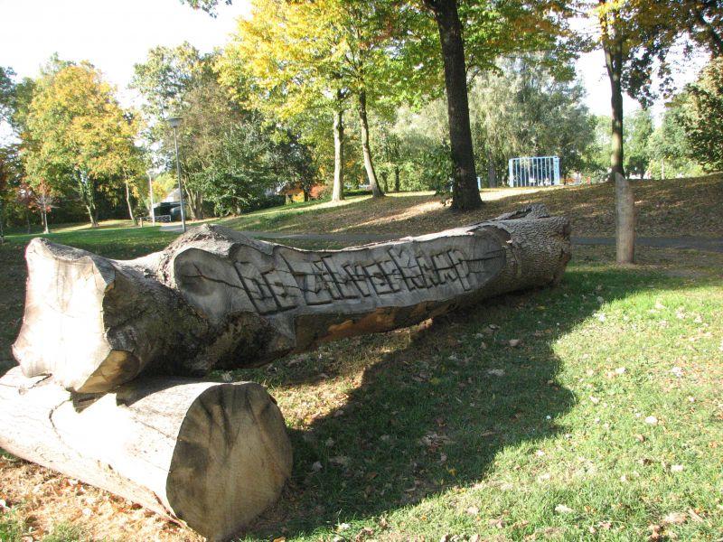 zilverkamp in gevelde boom gezaagd