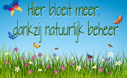 Ecologisch maaibeheer op twee locaties in de Zilverkamp!